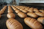 Сетка подовая транспортерная для хлебопечей.